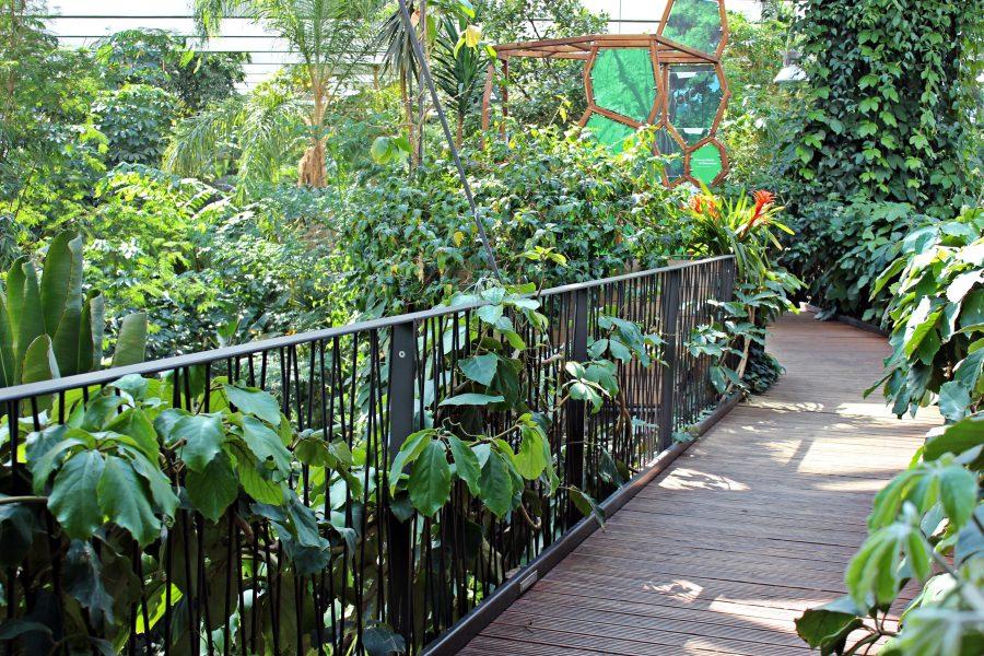 Walk through Biosphere Potsdam